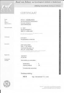 2011-07-19 certificaat heupen 001 (2)