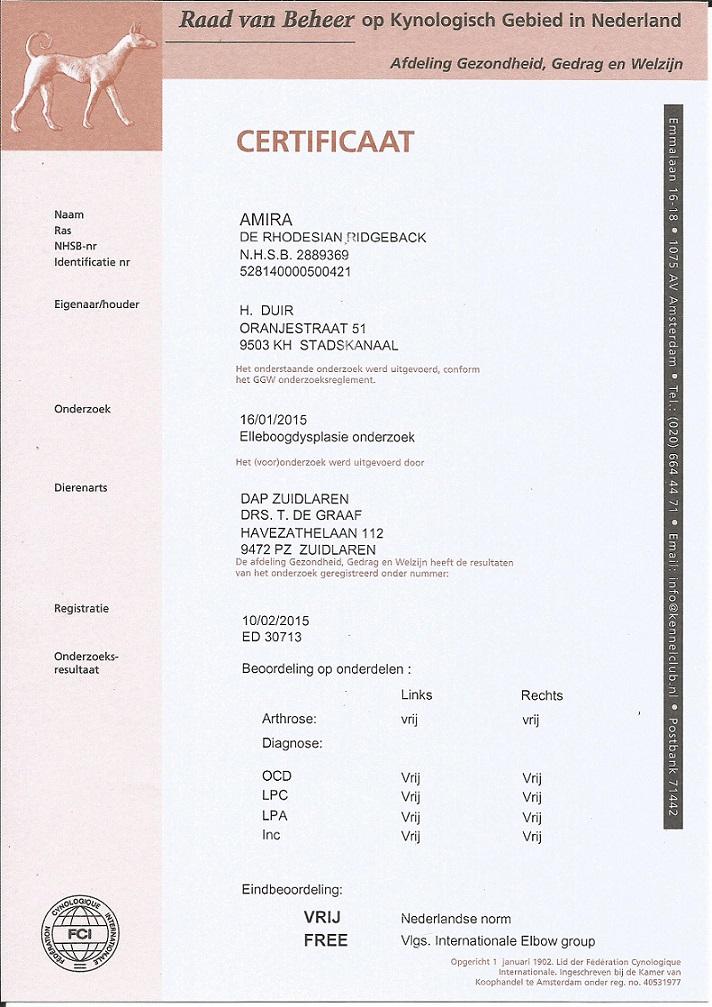 2016-04-28 Certificaat Elleboog RvB jpg - kopie
