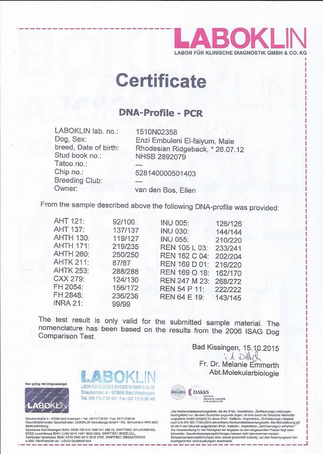 2016-05-15 DNA certificaat Enzi jpg - kopie