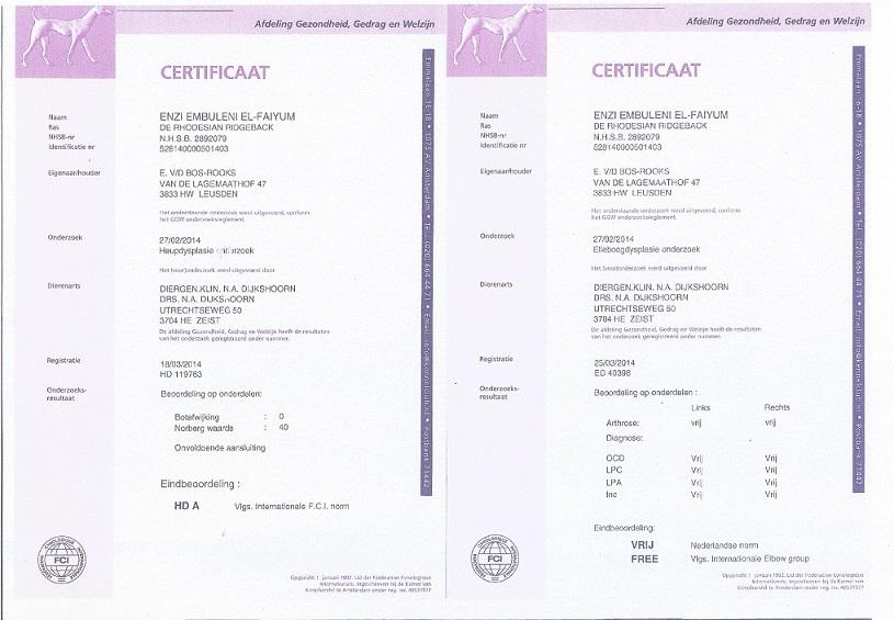 2016-05-15 Heup en elleboog certificaat Enzi jpg - kopie